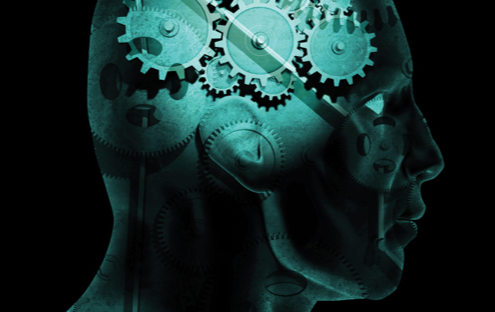 Stock image of a human head with mechanical gears in the area of the brain, representing the mechanisms of one's functionality and personality.