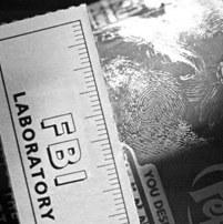 Latent Fingerprint Developed Using Cyanoacrylate Fuming.