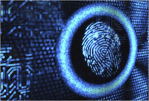 Fingerprint on Digital Background (Stock Image)