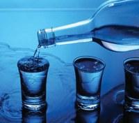 Policing Liquor Establishments: A Holistic Approach