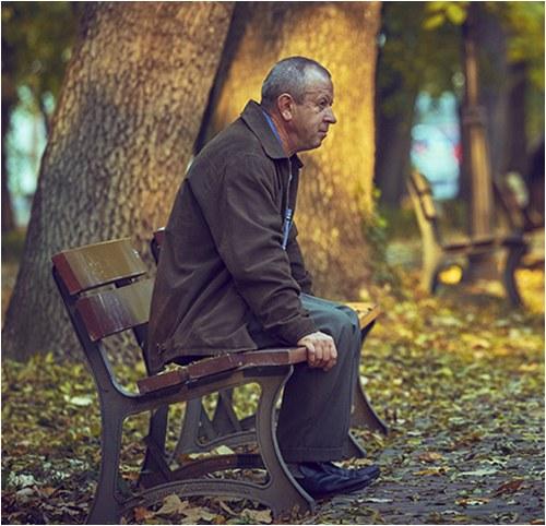 Older Man Sitting on Park Bench (Stock Image)