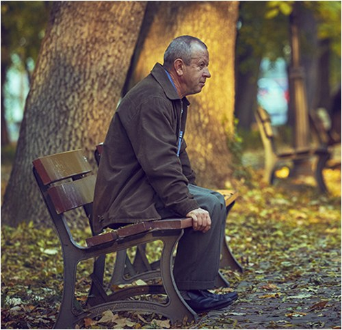 Stock image of a man sitting on a bench in a park.