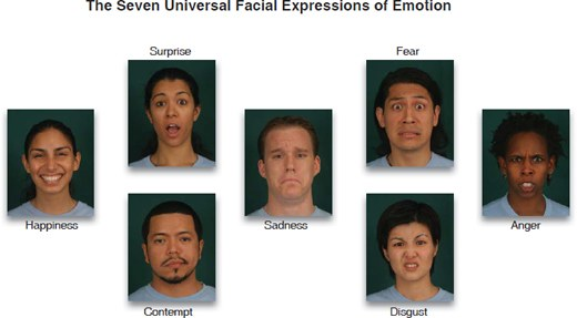 The Seven Universal Facial Expressions of Emotion