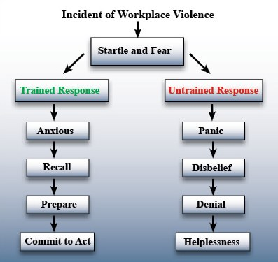 The differences in trained and untrained responses to incidents of workplace violence. This chart illustrates the disparities in responses between those who have and those who have not been trained to deal with these types of stressful situations. Both groups initially react by being startled and experiencing fear. Then, they begin to diverge: the untrained panic, whereas the trained experience controllable anxiety. From that point on, the trained group members begin to recall what they should do next, prepare, and act. The untrained, however, experience disbelief that eventually leads to denial and, ultimately, helplessness. Knowing how differently the groups will react based solely on training underscores the importance of advanced preparation.